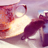 tortoiseshell: a teacup on the left of the image and a book on the right; between them, a small mouse puts its front paws on the book (Default)