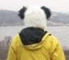 rudenka_music: (panda)