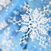 leelastarsky: (snowflake)