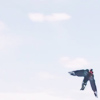 notapilot: (f: Look in the sky)