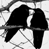 darknightmoon: (love)