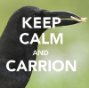 resonant: A crow with something in its mouth. Text: KEEP CALM AND CARRION (keep calm and carrion)