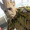 zhelana: (Marvel - Groot Close)