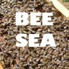 bcholmes: I'm covered in bees! (bee sea)