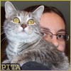 "kellzilla: gray tabby cat on my shoulder, me peeking around from behind; text ""PITA"" in lower left corner ([me] pitababy)"