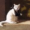 22sobaki: (кот, кот пропащий маленький)