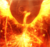 infernal_teddy: (fire, phoenix)