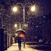 lapassantjuriste: an evening stroll/wonderful rain (15)