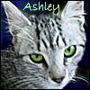 vilakins: (ashley)
