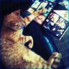 red_eft: (cats read comics)