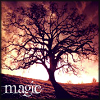 havocthecat: a magical tree (feelings tree magic)