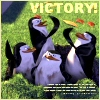 "yvi: Penguins from Madagascar, text: ""Victory!"" (Penguin -- Victory!)"
