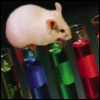 yvi: a mouse on top of test tubes (Science - Mouse)