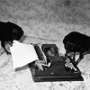 teigh_corvus: Black and white picture from Time Magazine of two ravens prodding at an underwood typewriter ([Personal] [Writerly] Ravens and writing)