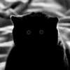 green_dreams: Greyscale silhouette of a black cat with grey eyes (adorable yet unsettling)