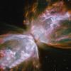 alexseanchai: Butterfly Nebula? (Butterfly Nebula)