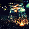 outlineofash: A glass jar nestled in grass glows with light. More are in the distance. (Gentle - Magic)