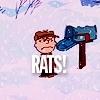 kenwyn89: (Rats!)