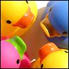 locketofyourhair: (ducky)
