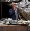 burn_the_world_down: (Money)