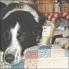 lazulisong: (oliver - it makes me drink beer)