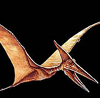 lo_rez: Artist's conception of winged dinosaur, apparently laughing (Dinopterosaur)