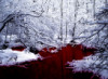 the_blood: (Blood_Is_The_Living_River)