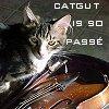 batdina: (catgut - lanning)