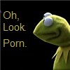 belle_meri: A frowning Kermit the Frog image captioned with 'Oh, Look Porn'. (Kermit Finds Porn)