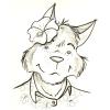 alohawolf: (A. Husky Me.)
