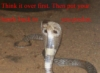snowywolfowl: (ticked off cobra)