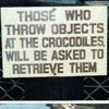 "megpie71: Photo of sign reading ""Those who throw objects at the crocodiles will be asked to retrieve them."" (Go Fetch, Crocodiles)"