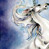 forestsofthenight: (last unicorn)