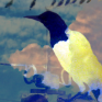 thisfishflies: A cloud superimposed over a crow (Crow cloud)