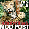 kittydesade: (modly post)
