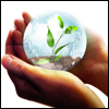 skywardprodigal: A sprig of green enclosed in a globe held in cupped hands (co-conspirators)
