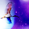 margaret_r: (Fly Free colour)