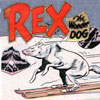 hradzka: (rex the wonder dog on skis)