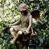 tmcg: (fairy)