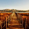 marny_h96: (landscape)