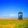 justice_turtle: Image of the TARDIS in a field on a sunny day (umbrella stand)
