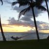 ironjeff: The back yard... Maui... (aaaah)