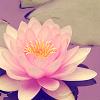 dostehseh: (Flower)