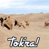 skarpedin: Tok'ra in the desert (desert)