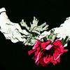 nadyspier: elderly hands holding a pink flower in a black background. (chloe flower)