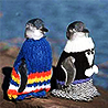 sunnymodffa: picture of 2 penguins in sweaters (Sweater penguins)