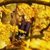slobodna: (Climbing Every Tree)