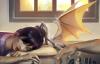 kaylinneya: (nap time)