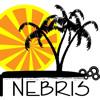 nebris: (Nebs Palms)