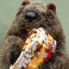 marmota_b: Photo of my groundhog plushie puppet, holding a wrapped present (birthday, gift, groundhog, Howard, marmot)